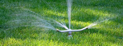 watering advice lawn care 22101