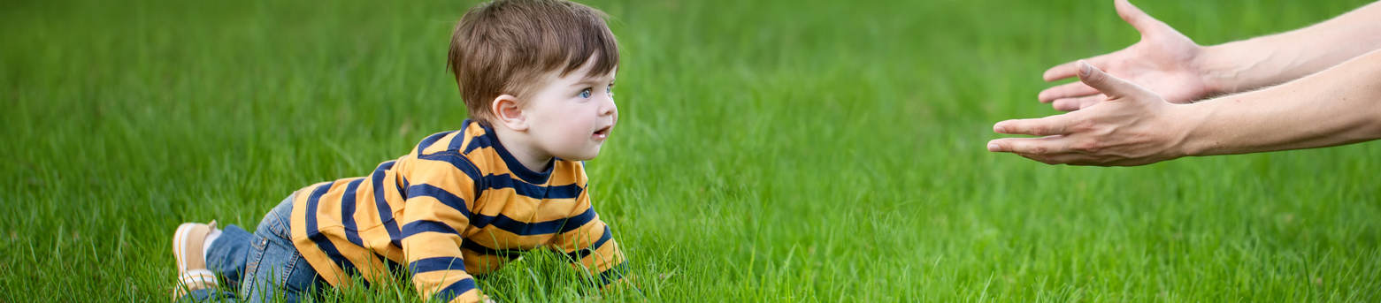 baby safe organic approach lawns