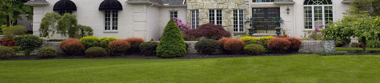 prolawn-landscaping